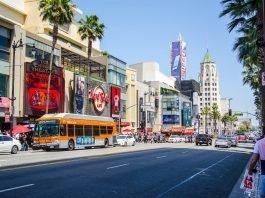 Bus Beside Building in Los Angeles, CA - Jamie McInall via Canva